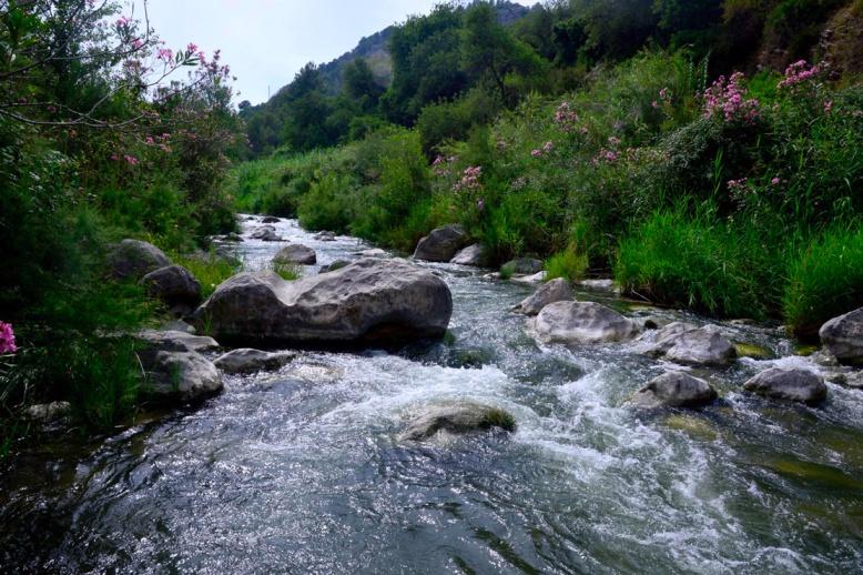 River Serpis